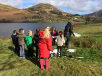 Stream dipping by Loweswater Lake