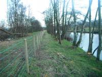 Coppiced marginal trees & associated fencing
