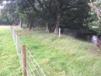 Fencing to restrict livestock access
