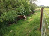 Leaky dams and bankside fencing