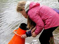 Ennerdale School Pupil looking for freshwater mussels using a bathyscope