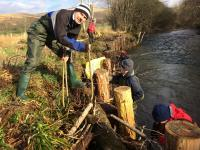 Planting willow at Gaterigghow