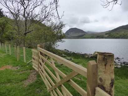 New fencing along lake shore
